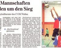 2011-10-08-volleyball-turnier-wallau451.jpg